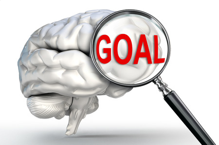 goal word on magnifying glass and human brain on white background photo