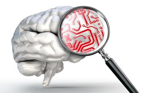 circuito integrado: circuito rojo en la lupa y el cerebro humano en el fondo blanco