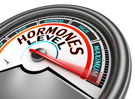 Hormones level conceptual meter indicate maximum, isolated on white background
