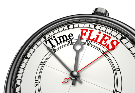 time flies: Time flies red message on concept clock, isolated on white background