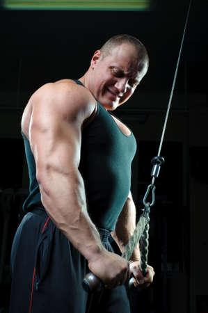 bodybuilder training: Bodybuilder training in gym  Stock Photo
