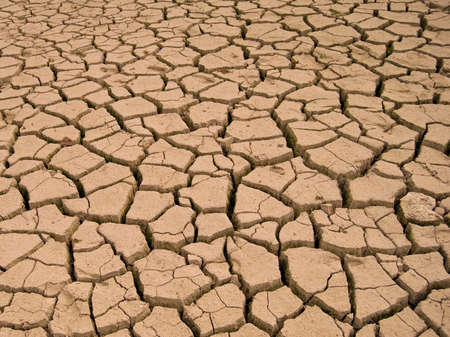 barren: parched lake. Cracks on dry land in the desert.
