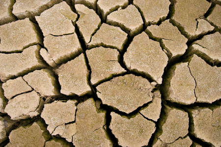 arid: parched lake. Cracks on dry land in the desert.