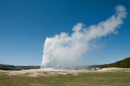 the faithful: The Old Faithful Stock Photo