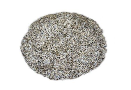 Fake rice isolated