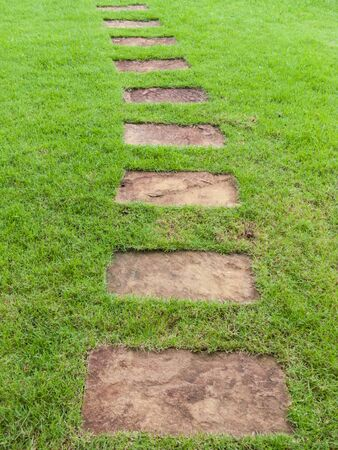 Stone path on green field photo