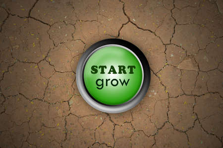 green button start grow on dry ground Stock Photo