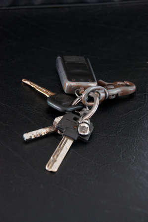 Automobile key and alarm system photo