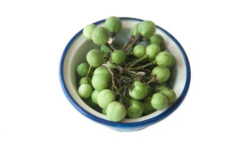 Tropical green pea eggplant on white background Stock Photo - 13165758