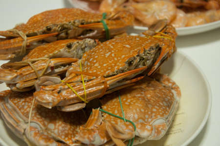 The cooked crab on a white plate photo