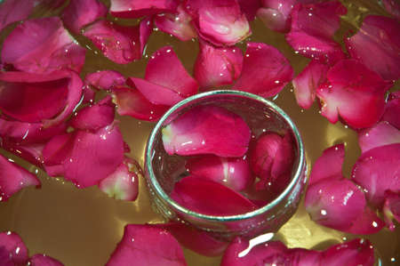 sliver: Red rose petals in water and sliver bowl Stock Photo