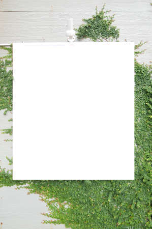 Empty signboard in green grass Stock Photo - 15074190