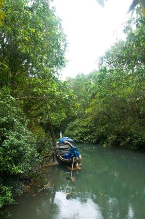 tha: Boat at Krabi Province of Thailand     Pa Phru Tha Pom Klong Song Nam   Nature Trail  Stock Photo