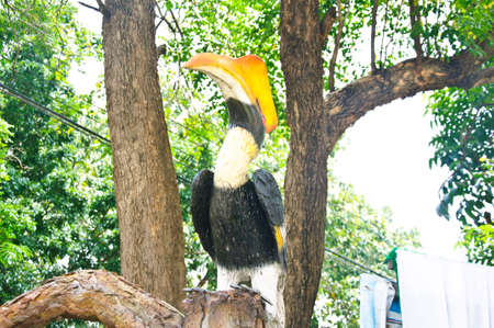 coraciiformes: statue of great pied hornbill decoration in zoo Stock Photo