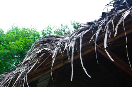 roof framework: A thatched Roof in Thai style