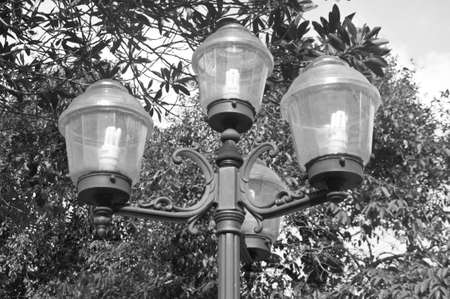 Transparent lamps  on the garden photo