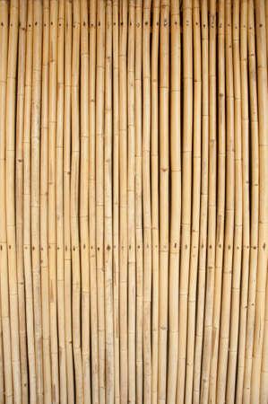 japones bambu: imagen de ca�as de bamb� como pared o cortina