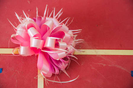 pink bow: pink bow