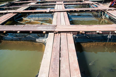 Fish farm located in thailand country photo