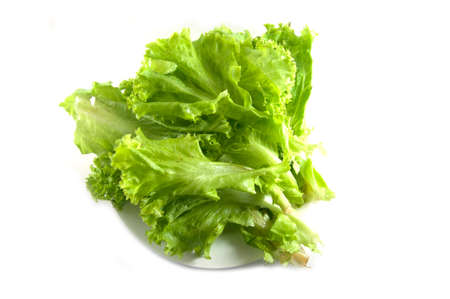 chlorophyl: Green lettuce leaf lying on the plate Stock Photo