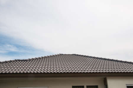 plating: Architectural detail of roof