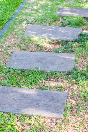 stepping stone: A stepping stone walkway Stock Photo