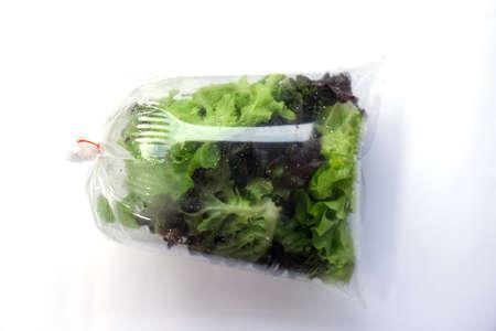 lettuces: Hydroponic plants, green oak and red oak lettuces leafs in plastic bag