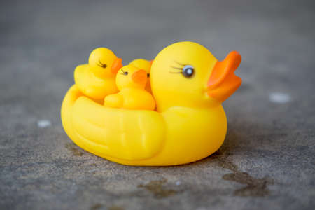 Photo of toy plastic yellow rubber duck Stock Photo
