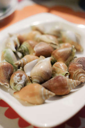 synonym: Boiled fresh Laevistrombus canarium or sea snail Thai style food Stock Photo