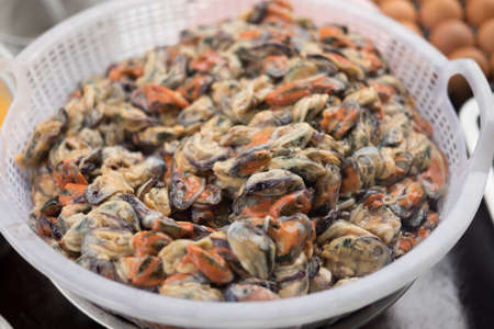 Many raw mussel prepare for cook is mussel pancakes or Oyster omelette (Hoi Tod) in local street food market Thailand Stock Photo