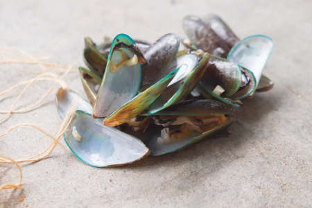 Pile of steamed mussels  after eat (waste food)