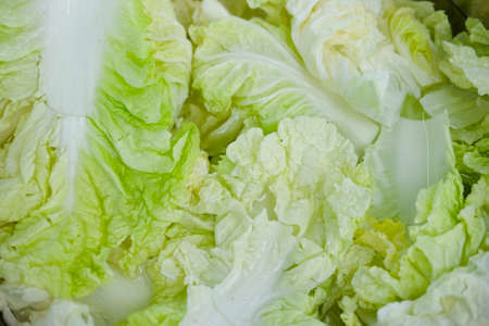 Fresh juicy green leaf cabbage salad (close up) Фото со стока