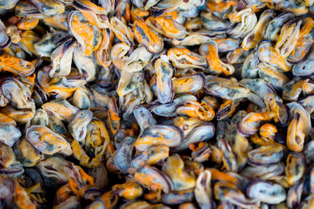 Raw material of fried mussel (hoy tod) in front of local street food from Thailand.