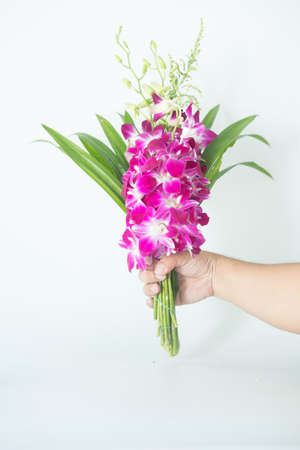 Bouquet of orchid flower and pandan leaves for pray respect to Buddha in hand Stock Photo