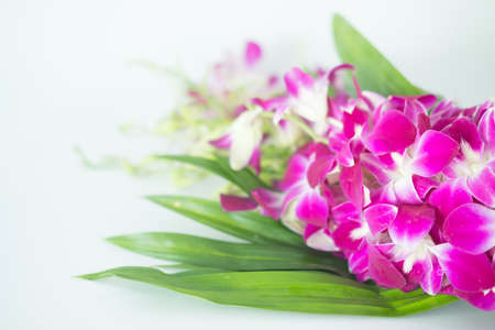 Bouquet of orchid flower and pandan leaves for pray respect to Buddha. Flowers for worship