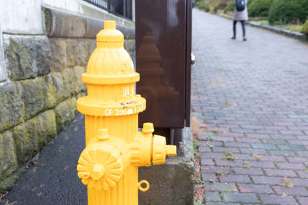 Yellow fire Hydrant on the sidewalk, close up Archivio Fotografico