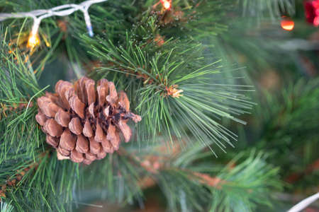 Pine cones hanging on Christmas tree. Christmas decoration