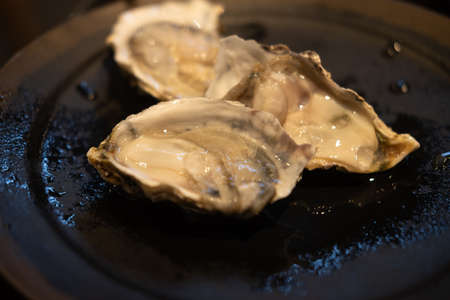 Raw fresh oysters in the restaurant appetizer