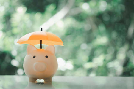 Pink piggy bank and orange umbrella. Save money and investment concept.