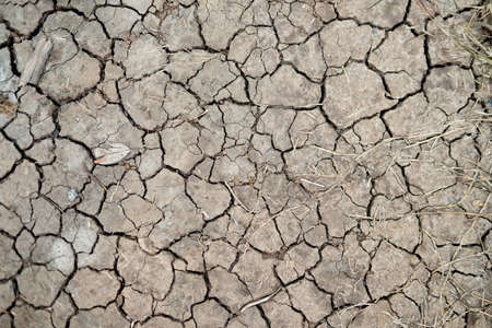 Dry soil or cracked ground texture background. Top view