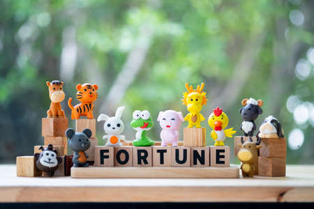 Set of zodiac cute doll with wood text of fortune on a nature background