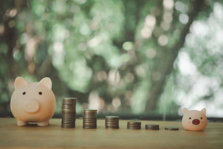 Stacking coins pile and cute pink piggy bank for savings with money and planning step up to growing, Saving money for retirement fund and the future plan concept.
