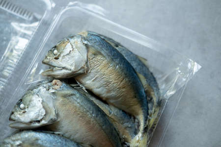 Raw Thai mackerel in box, selection focus
