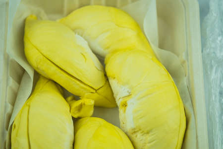 Fresh organic ripe Durian in a biodegradable container, King of fruits which is the most popular in Thailand