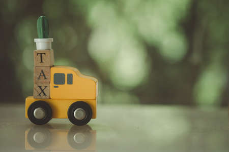 Miniature cactus placed on wooden cubes with word TAX on wood toy car. The concept of time for pay tax. 免版税图像