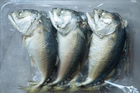 Fresh steamed Thai mackerel in plastic box. Top view