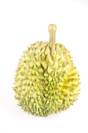 Durian on white background. Durians are the king of fruits and can be grown in the right conditions, durian is delicious. 免版税图像