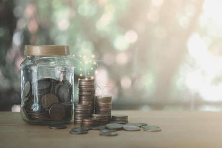 Trees growing on coin stack step up and coin in glass jar. Concept financial business investment.