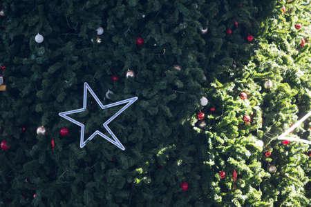 Star on the big Christmas tree in day time
