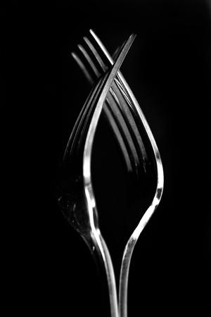 Forks Low key